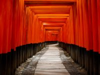 photodune-409201-japan-gate-torii-xs